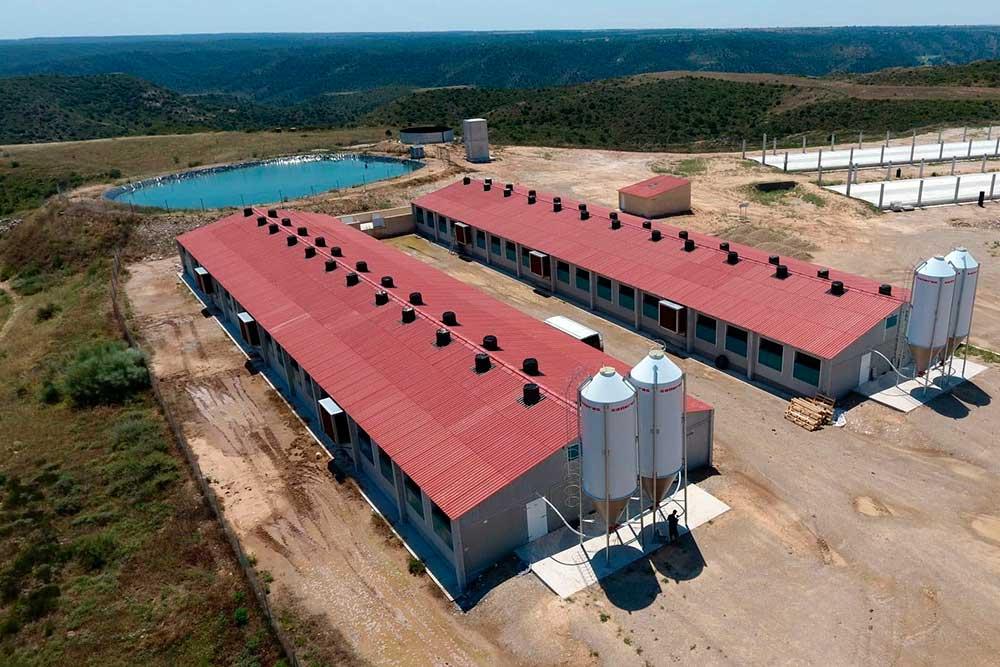 salleras equipamiento para granjas